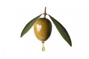 Oliv-Kontomari-